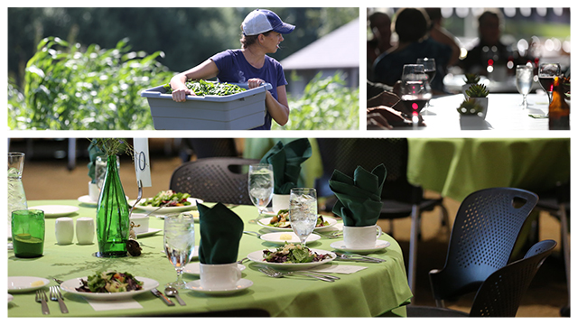 Photo montage of a student harvesting produce on the Open Petal Farm and an elegantly laid table